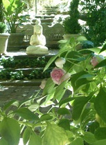 http://livingalifeinflower.com/wp-content/uploads/2012/02/TOC-4-CaretakersofWonder1.jpg